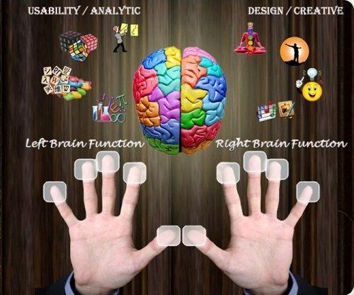 Sinh trắc học dấu vân tay là phương pháp hữu ích giúp chúng ta thấu hiểu bản thân hơn
