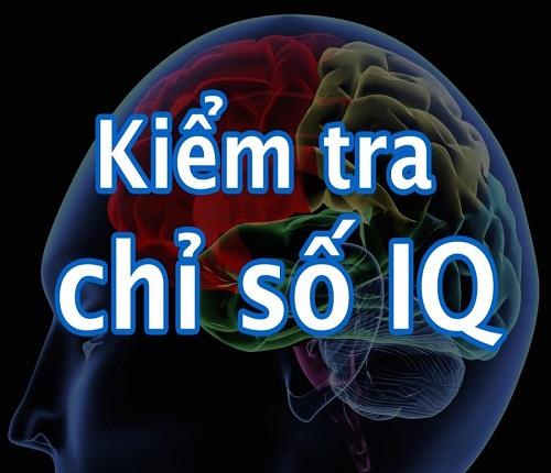 Chỉ số IQ có phản ánh mức độ thông minh?
