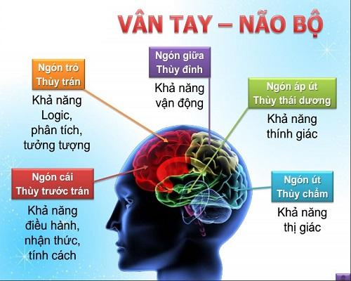 Sinh trắc học dấu vân tay ở Hồ Chí Minh