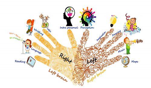 Khám phá những tiềm năng bẩm sinh qua sinh trắc học dấu vân tay