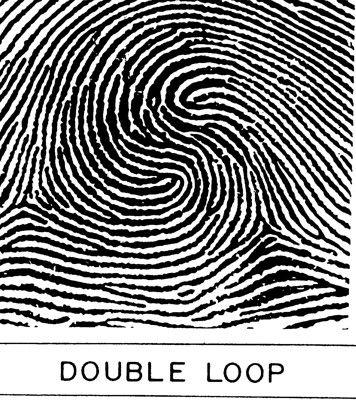 Chủng vân tay Double loop Whorl