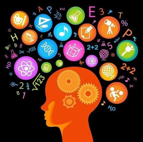 Con người cần sử dụng toàn bộ bộ não để hoàn thành các nhiệm vụ hàng ngày, từ đi bộ, hít thở cho đến làm việc