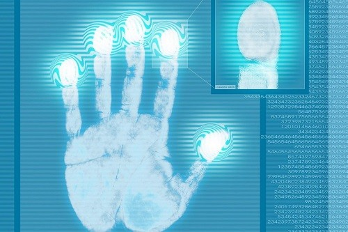 Sinh trắc vân tay để khám phá những chỉ số quan trọng trong não bộ
