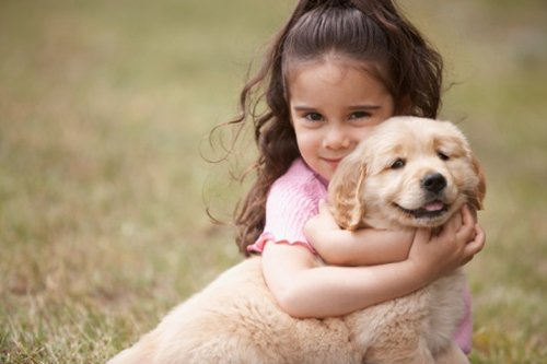 Một người bạn nhỏ làm cuộc sống của bạn thêm hạnh phúc