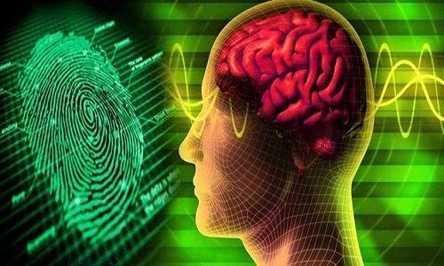 Sinh trắc học dấu vân tay khám phá tiềm năng trong bạn