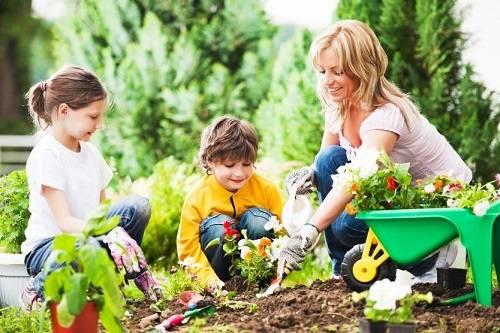 Dạy bé cách trồng cây là tăng tình yêu thiên nhiên của bé
